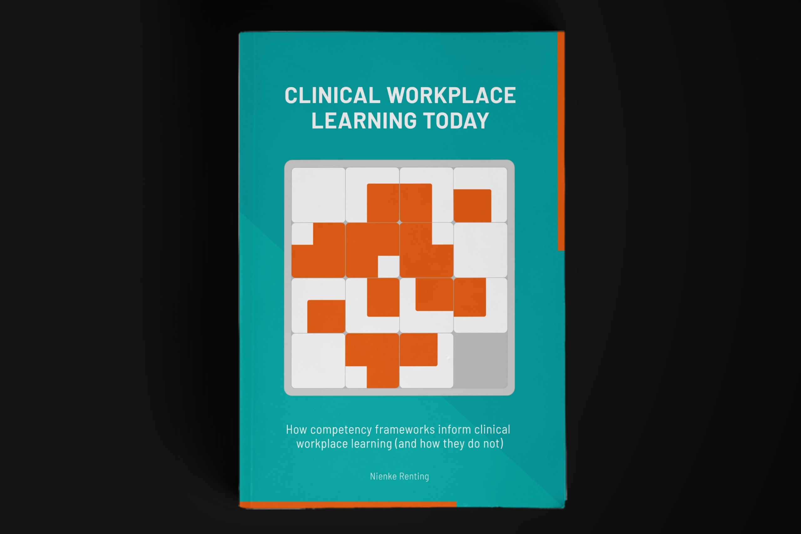Fenna Schaap Clinical workplace learning today